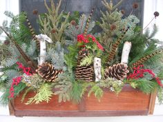 My winter window boxes Christmas Window Boxes, Winter Window Boxes, Christmas Porch, Christmas Makes, Christmas Themes, Christmas 2019, Christmas Wreaths, Christmas Decorations, Holiday Ideas