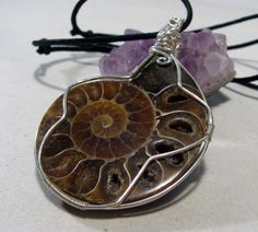 Ammonite Fossil Pendant by PrimalPulseDesigns on Etsy Ammonite, Sterling Silver Chains, Black Cotton, Fossil, Cuff Bracelets, My Etsy Shop, Pendant, Gifts, Handmade