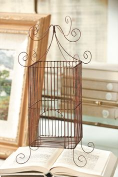 Whimsical Birdcage - now available at ballarddesigns.com
