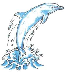 """same Dolphin tattoo I have... <3 I think all of us that turned 18 and picked it off the wall have it. lol. Now it's just trying to add to it to """"make it my own""""."""
