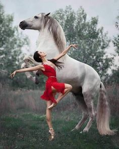 "A truly beautiful photo of ballet royalty and equine excellence. Principal dance… A truly beautiful photo of ballet royalty and equine excellence. Principal dancer Anastasia Limenko with the extraordinary Andalusian horse ""Brioso"" Photo ©. Pretty Horses, Horse Love, Beautiful Horses, Animals Beautiful, Cute Animals, Ballet Beautiful, Horse Girl Photography, Dance Photography, Happy Photography"