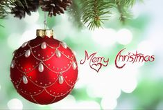 Merry Christmas from Everyone at Van Griffith Kia! #MerryChristmas #HappyHolidays