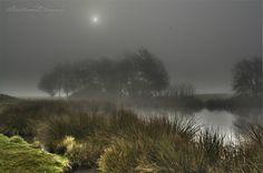 Foggy Qua Fen Common, Soham Cambridgeshire. The Palmers saw this around 1840....
