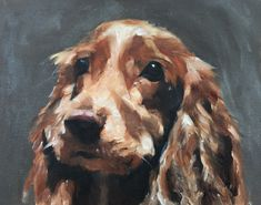 Spaniel Dog- Art Print - 8 x 10 inches - from original painting by J Coates by JamesCoatesFineArt on Etsy