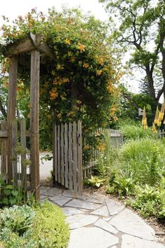 Photo about A healthy honeysuckle vine greets visitors at the entry gate to a beautiful country garden. Image of pressure, plants, pergola - 34614614 Honeysuckle Cottage, Honeysuckle Vine, Landscape Design Small, Small Garden Design, Garden Tool Shed, Garden Gates, Garden Arbor, Backyard Pergola, Backyard Landscaping