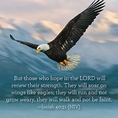 But those who wait on the LORD Shall renew their strength; They shall mount up with wings like eagles They shall run and not be weary They shall walk and not faint. Isaiah 40:31 NKJV