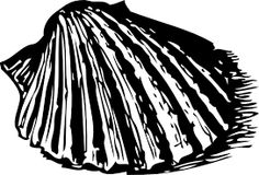 linocut shell images - Google Search
