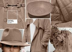 Top 10 Pantone Colors for Fall 2016: Warm Taupe  #colors #trends #fall2016