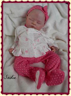 my Sadie November 2014
