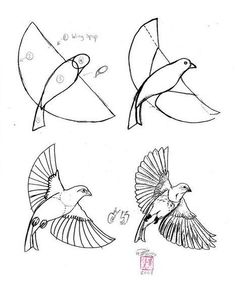 Easy drawing of a bird art at middle school practice drawing birds easy pencil drawings of . easy drawing of a bird Bird Drawings, Animal Drawings, Easy Drawings, Drawing Sketches, Pencil Drawings, Drawing Birds, Sketching, Draw A Bird, How To Draw Birds