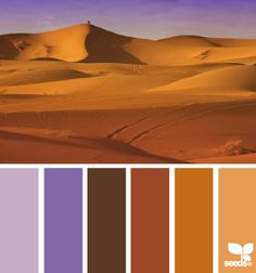 Design Seeds--A website of beautiful color schemes Colour Pallette, Color Palate, Colour Schemes, Color Combos, Color Patterns, Design Seeds, World Of Color, Color Of Life, Desert Colors
