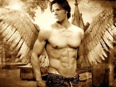 Google Image Result for http://muscle.iuhu.org/wp-content/uploads/2010/11/jared-padalecki-workout-supernatural-sam-winchester.bmp