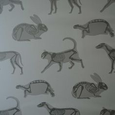 """""Animal Magic"""" Green Wallpaper by PaperBoy"