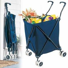 Ehlers-Danlos Support Groups and EDS education Folding Shopping Cart, Folding Cart, Shopping Carts, Mom Pictures, Ehlers Danlos Syndrome, Chronic Illness, Chronic Pain, Fibromyalgia, Home Office Furniture