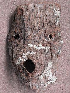 Bark face <3