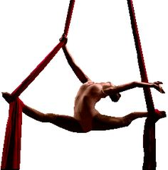 Google Image Result for http://community.simplycircus.com/images/JulieG_-_Splits_on_silks_-_web.gif