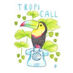 Tropi Call - watercolor