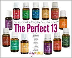 "You are probably wondering, ""What oil should I buy next since I have the Premium Kit?"" Well, we have your back with The Perfect 13! These amazing oils are our favorite additions to the premium kit!!"