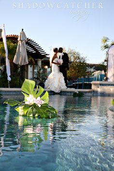sandiegoweddingphotographer_sj_026.jpg (480×720)