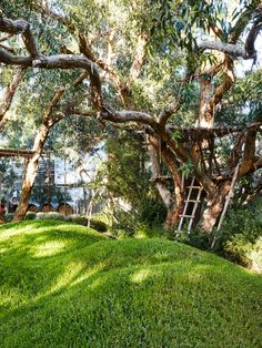 Peter Shaw · Sunnymeade — The Design Files Ikea Garden Furniture, Coastal Furniture, Riverside Garden, English Garden Design, Australian Native Garden, Coastal Gardens, Le Havre, California, The Design Files