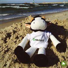 Nach der aufregenden Zeit in Brasilien, ist es Zeit für ein neues Abenteuer. Gemeinsam mit Anna-Lena bin ich an die Ostsee gereist, genauer gesagt nach Warnemünde. Bei perfektem Strandwetter haben wir die Zeit genossen und einfach die Seele baumeln lassen.