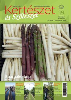 A málna tavaszi tápanyag-utánpótlása Asparagus, Vegetables, Food, Studs, Essen, Vegetable Recipes, Meals, Yemek, Veggies