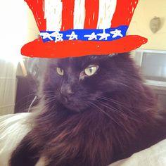 Patriotic Dougal