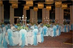 Sky blue chair covers
