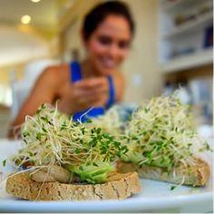 Gluten free open-faced beautifying avocado sandwich