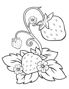 Fruit Coloring Pages, Flower Coloring Pages, Coloring Book Pages, Coloring Pages For Kids, Coloring Sheets, Free Coloring, Flower Embroidery Designs, Hand Embroidery Patterns, Applique Patterns