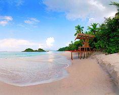 My Kinda Paradise St George Island