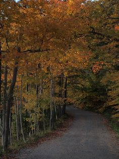 Beauchamp Point Road