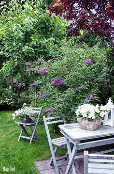 Bag End: Perhospensas Shabby Chic Garden, Garden Cottage, Shabby Cottage, Home And Garden, Small Backyard Design, Garden Design, Feel Good Pictures, Butterfly Bush, My Secret Garden