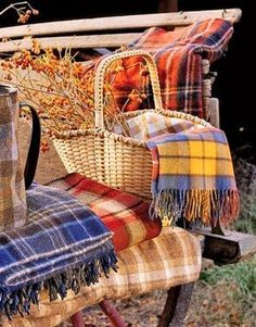 ⊰✿ tartan & plaid  .. X ღɱɧღ || The Polohouse: Autumn Outings