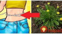 Toto o nej väčšina ľudí netuší: Obyčajná púpava je zázrak na chudnutie – spravte toto a máte rozpúšťač tukov a bleskový detox! Medicinal Herbs, Detox, Health Fitness, Spices, Gardening, Food, Fashion, Moda, Spice