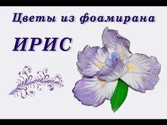 Цветы из фоамирана. ИРИС из фома своими руками - YouTube