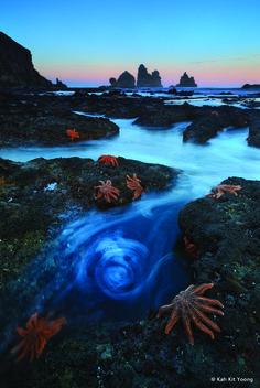 Está no Brasil exposição com melhores fotos da natureza | Greenstyle