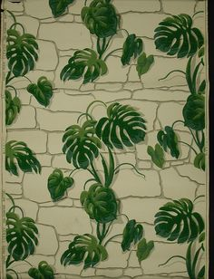 Large-scale design of vining philodendron growing up a flat stone wall. Printed in shades of green and gray on white ground. 1950s Wallpaper, French Wallpaper, Love Wallpaper, Fabric Wallpaper, Pattern Wallpaper, Pattern Art, Color Patterns, Print Patterns, Indigo Prints