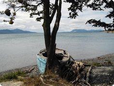 lago_escondido Ushuaia, Patagonia, Australia, Tours, Mountains, Nature, Plants, Travel, Peek A Boos