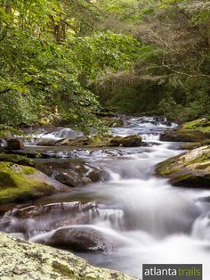 Hike Georgia's Cohutta Wilderness to thundering waterfalls, crystal-clear rivers and beautiful forest Camping And Hiking, Hiking Trails, Backpacking, Cool Places To Visit, Places To Go, Hiking In Georgia, Wilderness Trail, River Trail, Beautiful Forest