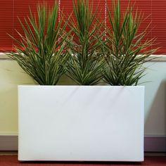 Troughs - Eco Green Office Plants Commercial Planters, Inside Garden, Green Office, Eco Green, Office Plants, Balcony Garden, Planter Pots, Roof Terraces, Container