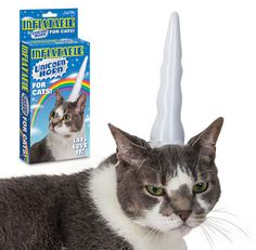 猫をユニコーンにするグッズ『inflatable unicorn horn for cats』   A!@attrip