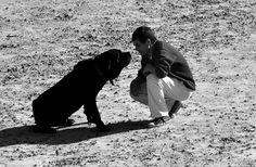 Man's best friend | Fotografia de CatiaVeloso | Olhares.com