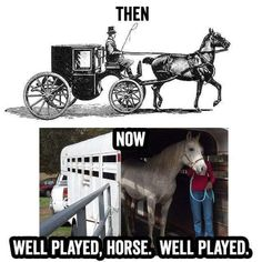 Well played horse