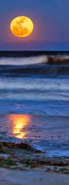 Ocean Waves GIF beach ocean nature waves animated sea tide gif - ocean waves animations