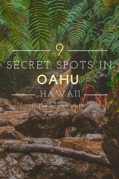 Oahu Hawaii, Hawaii Travel, Travel Usa, Hawaii Life, Maui, Travel Tips, Oahu Vacation, Vacation Trips, Vacation Ideas