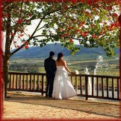 Eastern Cape Directory- Eastern Cape- Wedding and Function Wedding Function, Wedding Venues, Africa, Magazine, Weddings, Flowers, Wedding Reception Venues, Wedding Places, Florals