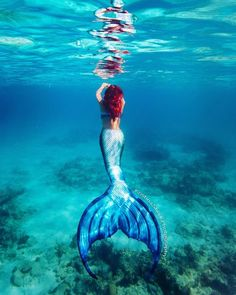 MerNation, Inc. creates silicone mermaid tails and accessories. Professional mermaid performers are also available to hire for parties, modeling or other events Mermaid Man, Mermaid Cove, Real Mermaids, Mermaids And Mermen, Realistic Mermaid Tails, Professional Mermaid, Silicone Mermaid Tails, Mermaid Pictures, Mermaid Pics