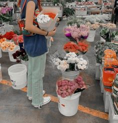 Flower Aesthetic, Photo Dump, My Flower, Dream Life, Aesthetic Pictures, Planting Flowers, Beautiful Flowers, Nature, Vsco