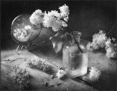 Still Life Photography, Photography Tips, Still Life Flowers, Charcoal Art, Still Life Photos, Be Still, Photo Art, Cool Photos, Flora